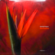 Ananda Project - Release (Inc. Cascades of Colour)