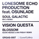 Lonesome Echo Pro - Soul Galactic (Mr.V ) / Blossom (Ian Friday)