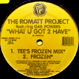 Romatt Project feat. Gail Powers - What U Got 2 Have