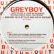 Greyboy (Pro. Quantic) - Got To Be A Love / Son-Ray