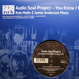 Audio Soul Project - You Know (Remixed Rob Mello)