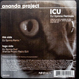 Ananda Project - ICU (DJ Spinna Remix)