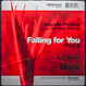 Ananda Project - Falling For You Part II (Remixed Blaze)